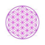 purple flower of life symbol