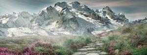 stone path approaching snowy mountain