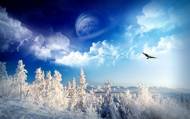 eagle flying over snowy landscape